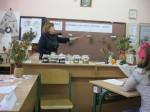 Виховний захід у 5-му класі на тему: Цілющі рослини рідного краю
